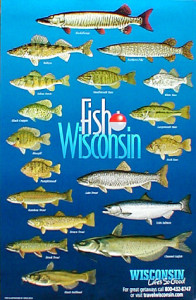 39 off the chain 39 fishing in wisconsin 39 s northwoods for Fishing season wisconsin